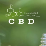 The Facts about CBD Oil for Pain Management
